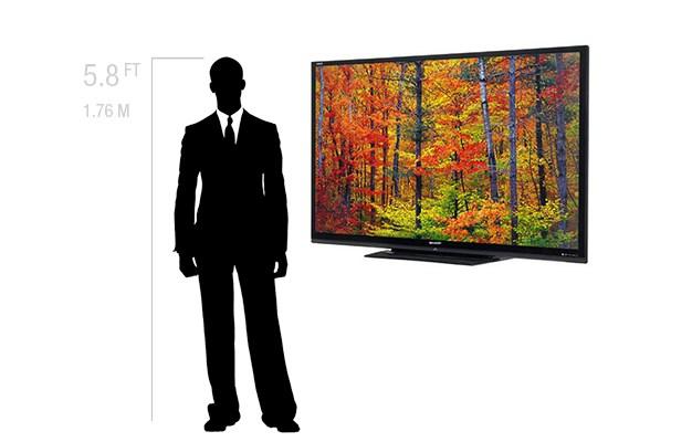 "Rentals Single Monitor 80"" LED"