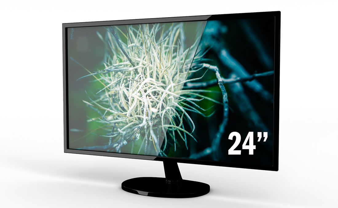 "Rentals Single Monitor 24"" LED"